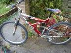 rhino full suspension mountain bike,  I am selling rhino....